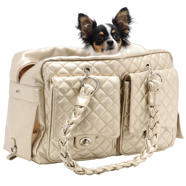 Alex Luxe Dog Carrier Bag By Kwigy Bo Gold Designer Pet