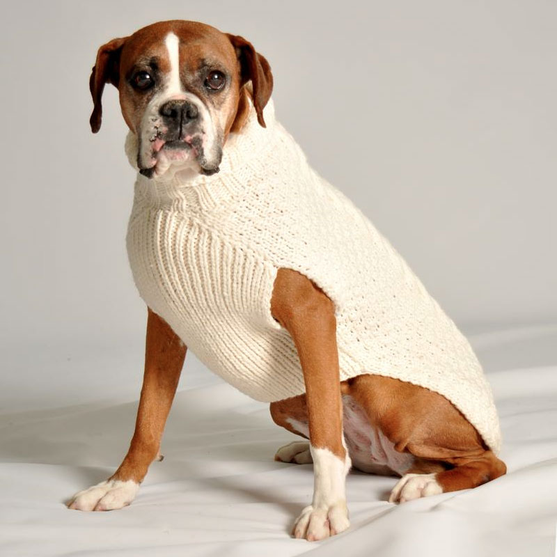 Boxer Dog Coat Knitting Pattern : Chilly Dog Cable Knit Dog Sweater- Natural Dog Sweaters ...