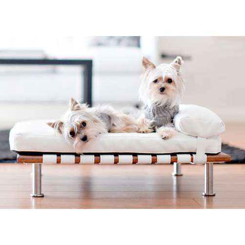 Dog day bed designer dog beds for small dogs at glamourmutt com
