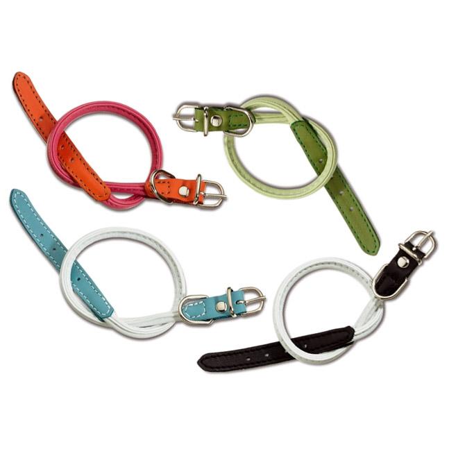 Designer rolled leather dog collars