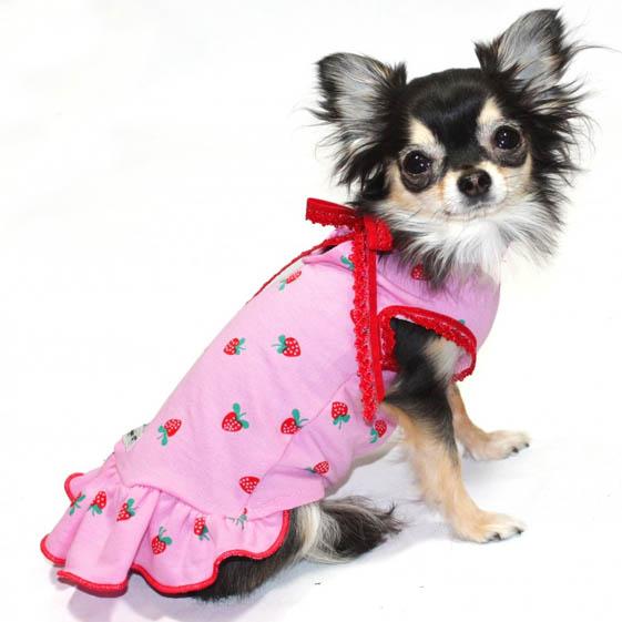Strawberry Shortcake Pink Dog Dress Dog Clothes At