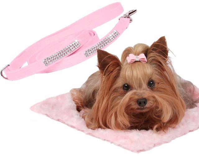 Susan Lanci Designer Dog Accessories
