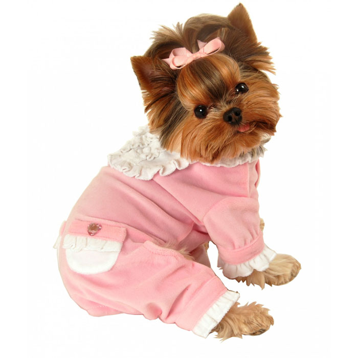 Sweetie Ruffle Dog Jumper Pink Designer Dog Boutique