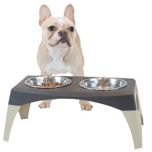 Modern Elevated Dog Feeder - Storm Cloud