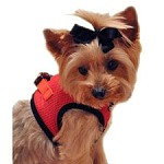 Choke Free Dog Harness- Scarlett Red