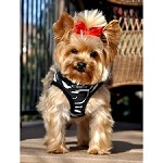 Choke Free Dog Harness - Zebra
