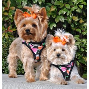 Choke Free Dog Harness - Pink Tulips