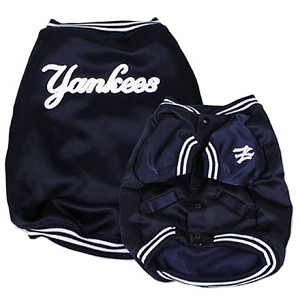 New York Yankees Dugout Dog Jacket