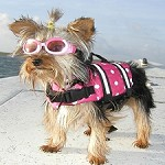 Polka Dot Designer Dog Life Jacket- Hot Pink