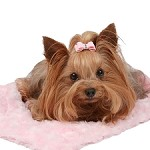 Susan Lanci Dog Carrier Blanket - Puppy Pink
