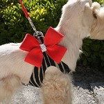 Two-Tone Nouveau Bow Step-In Dog Harness- Red Serengeti
