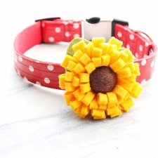 Dog Collar Sunflower Slider by Mimi Green