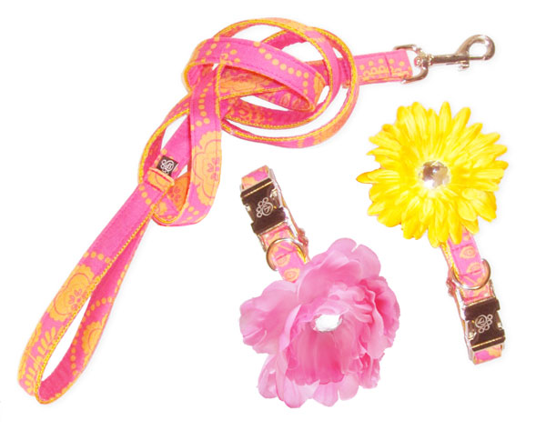 Tangerine Grapefruit Dog collar flowers