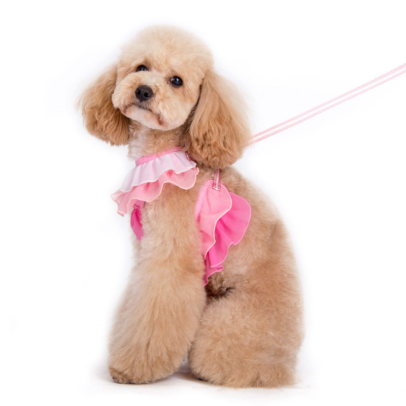 Ruffle Dog Harness