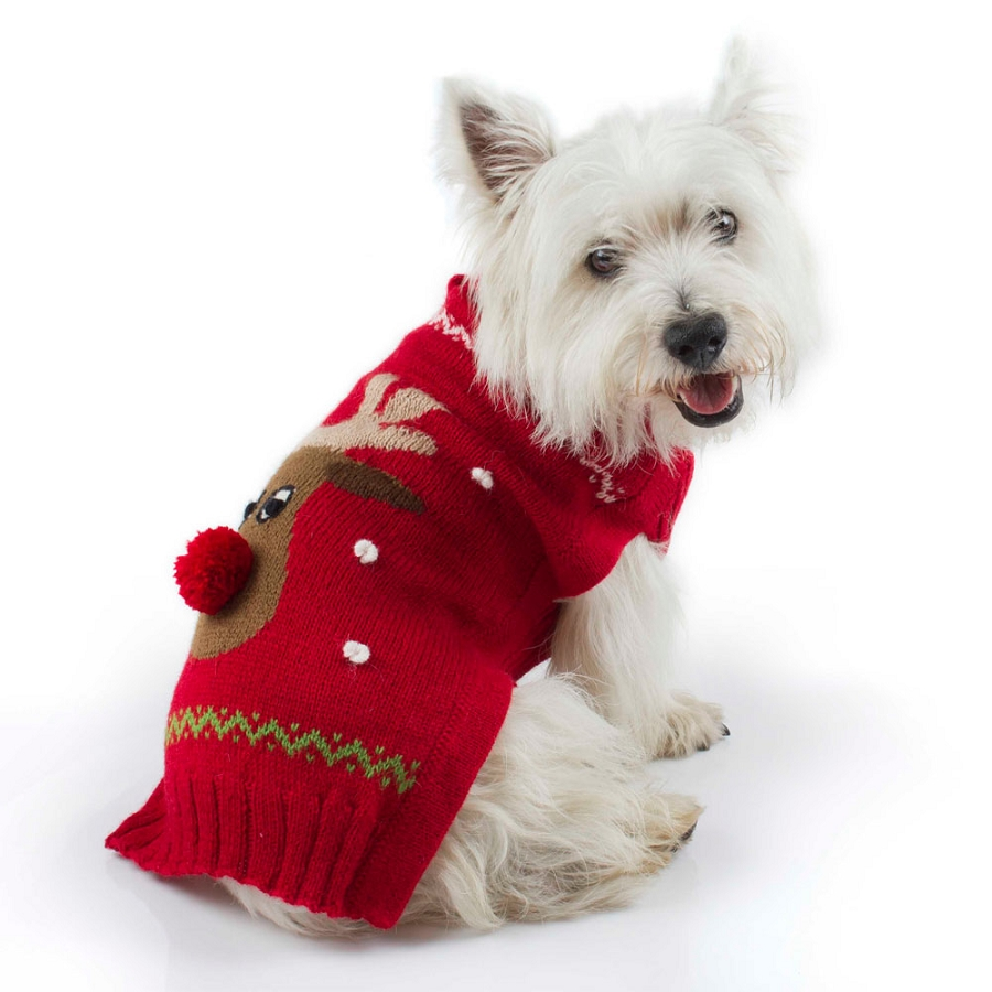 Alqo Wasi Red Rudolph Dog Sweater At Glamourmutt Com
