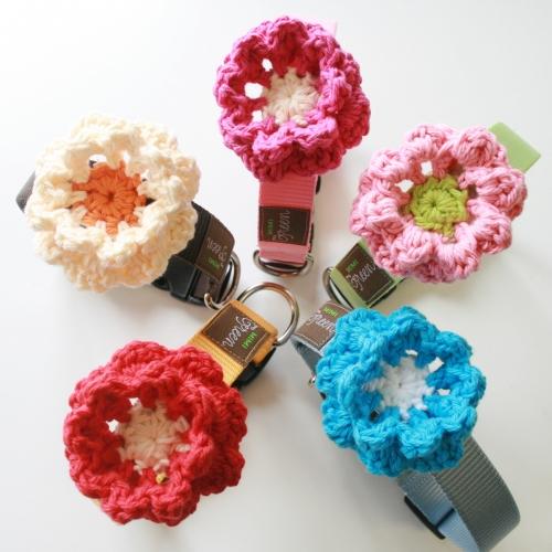 Mimi Green Little Boy Blue Crochet Flower Dog Collar Designer Dog