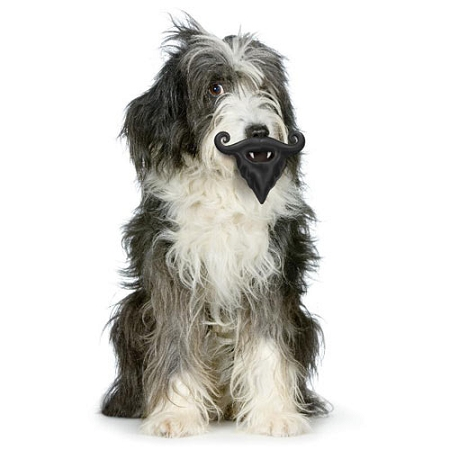 Humunga Mustache And Beard And Fangs Novelty Dog Toy By