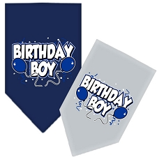 Birthday Boy Balloon Dog Scarf