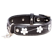 Black Lucy Floral Leather Dog Collar