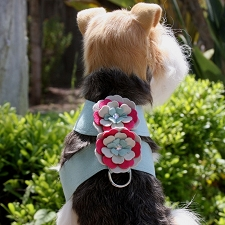 Blossom Tinkie Harness by Susan Lanci
