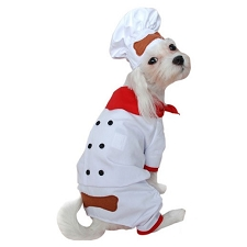 Chef de Cuisine Dog Costume