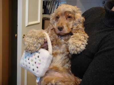 Chewy Vuiton Purse Dog Toy White | Designer Dog Boutique