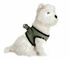 Choke Free Dog Harness- Lily Pad Green