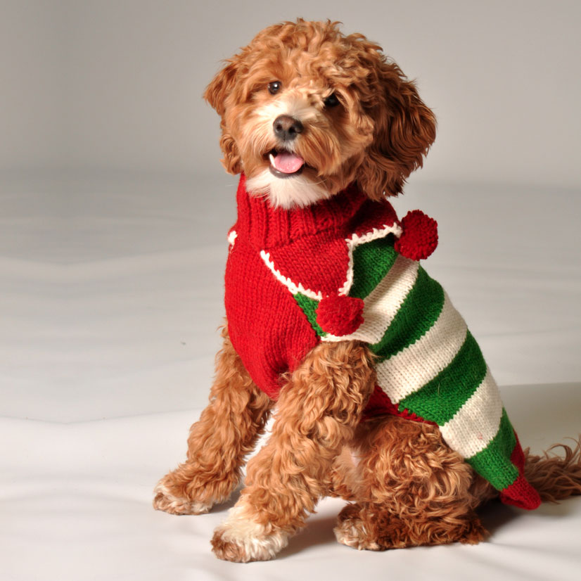 Christmas Elf Dog Sweater by Chilly Dog - Christmas Elf Dog Sweater By Chilly Dog At GlamourMutt.com