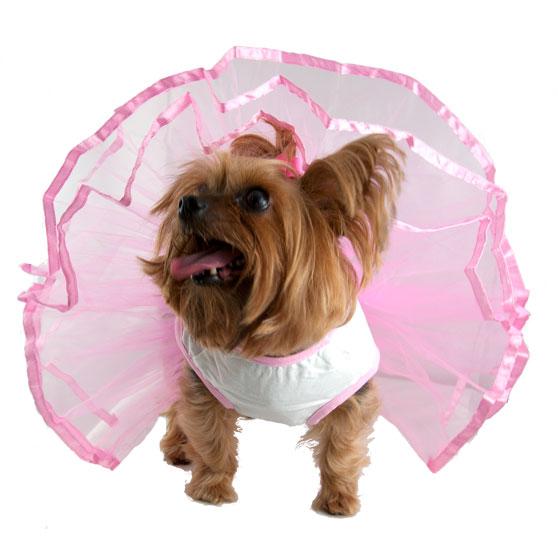 3e4a7dc0d3f2 Cupcake Tutu Dog Dress - Cute Dog Clothes at GlamourMutt.com