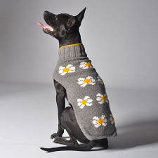 Daisy Wool Dog Sweater by Chilly Dog