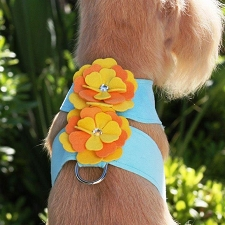 Darla Tinkie Harness by Susan Lanci