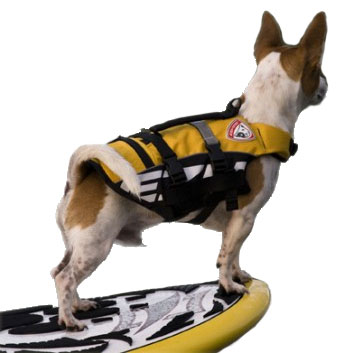 Deluxe Small Doggy Life Jacket by Ezydog at Glamourmutt