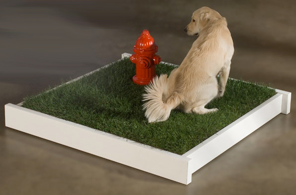 PETaPOTTY Fire Hydrant for Dogs   Designer Dog Supplies