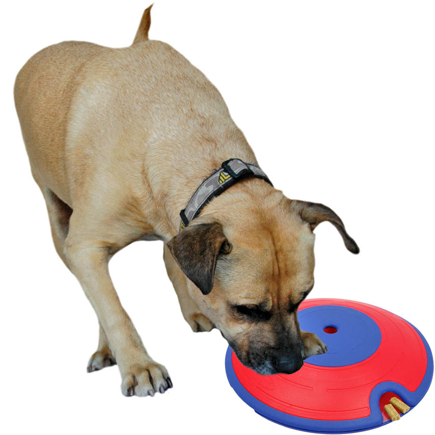 Dog Treat Toys Interactive