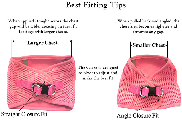 Doggie Design Harness Fit Guide