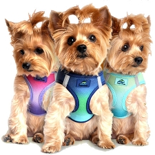 Ombre Choke Free Step-In Dog Harness- 9 Colors