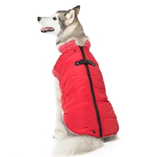 Dogo Runner Coat- Red