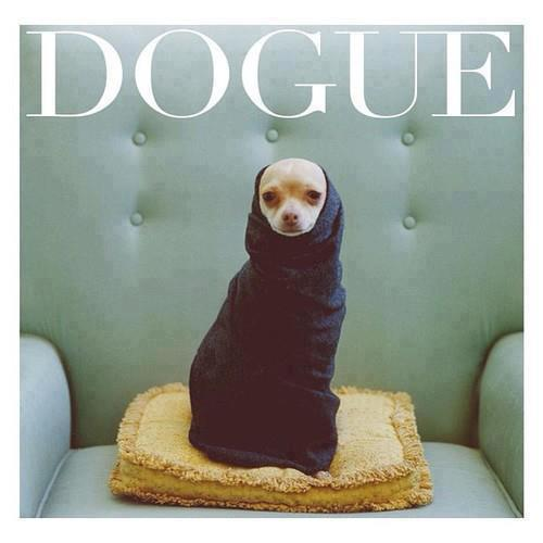 Dogue Fashion