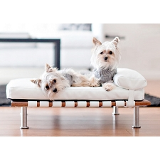 Glamour Mutt® Modern Dog Day Bed- White