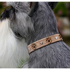 Embroidered Paws Swarovski Crystal Dog Collar - 20 Colors