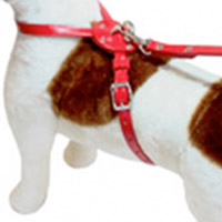 Figure Eight Leather Dog Harness Festive Red