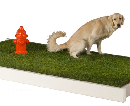 Petapotty Fire Hydrant For Dogs Designer Dog Supplies And Puppy Clothes At Glamourmutt