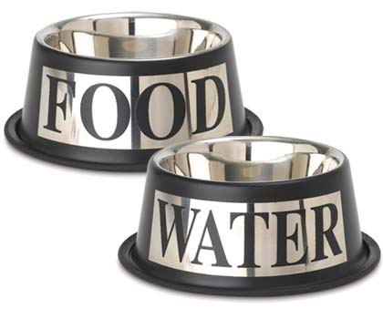 dog food and water bowl set stainless steel silver designer dog