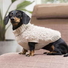 Game of Bones Luxury Alpaca Dog Sweater
