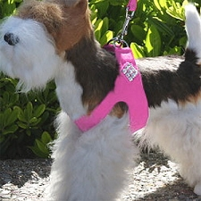Giltmore Crystal Step-In Dog Harness- 20 Colors