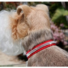 Giltmore Double Row Swarovski Crystal Dog Collar - 20 Colors