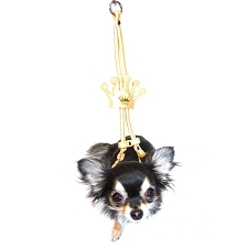 Golden Crown Step-In Dog Harness
