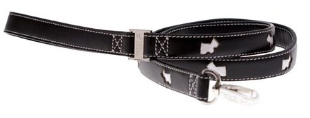 matching black leather leash