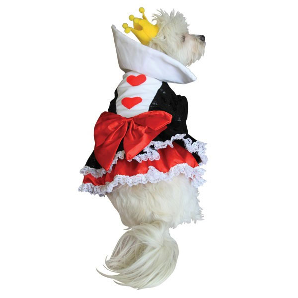 Haughty Queen Of Hearts Dog Costume Halloween Costumes