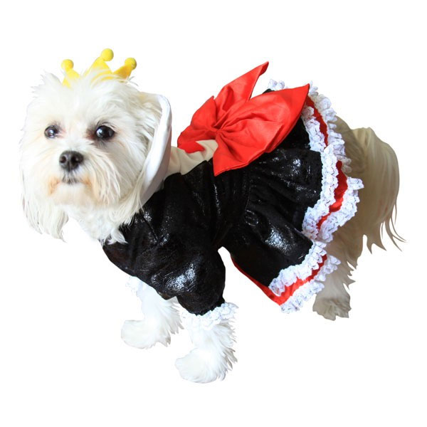Haughty Queen of Hearts Dog Costume | Halloween Costumes at GlamourMutt.com  sc 1 st  Glamour Mutt & Haughty Queen of Hearts Dog Costume | Halloween Costumes at ...